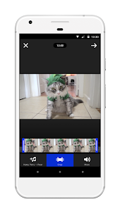 screenshot of Coub — GIFs with sound version 2.5.21