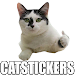 Download Gatos Cats WAStickerApps Memes Momazos 3.0 APK