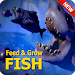 Download Guide for Fish Feed Grow Series 2020 4.0 APK