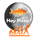 Download Hoy Pican 1.0145 APK