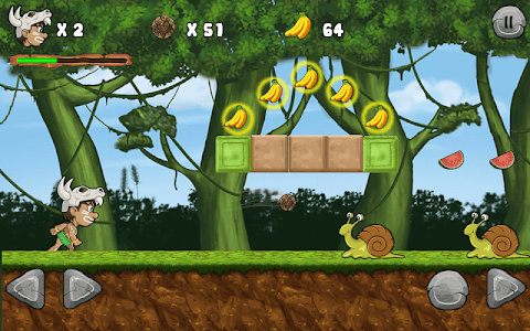 screenshot of Jungle Adventures version 13