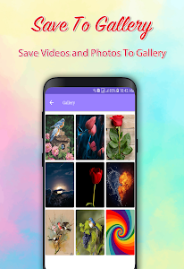 screenshot of Video Downloader for Pinterest‏ version 1
